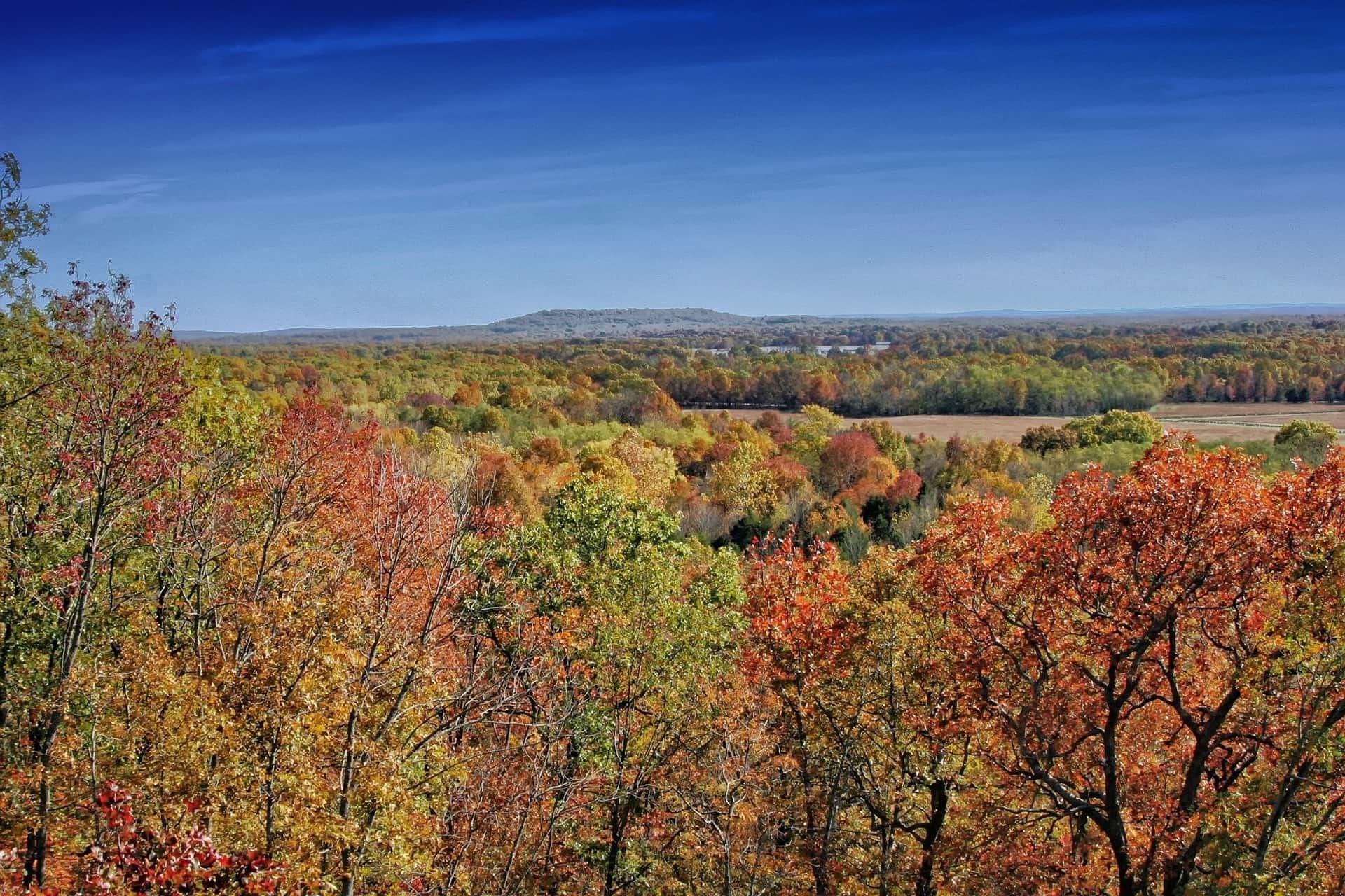 Autumn Arkansas Tour