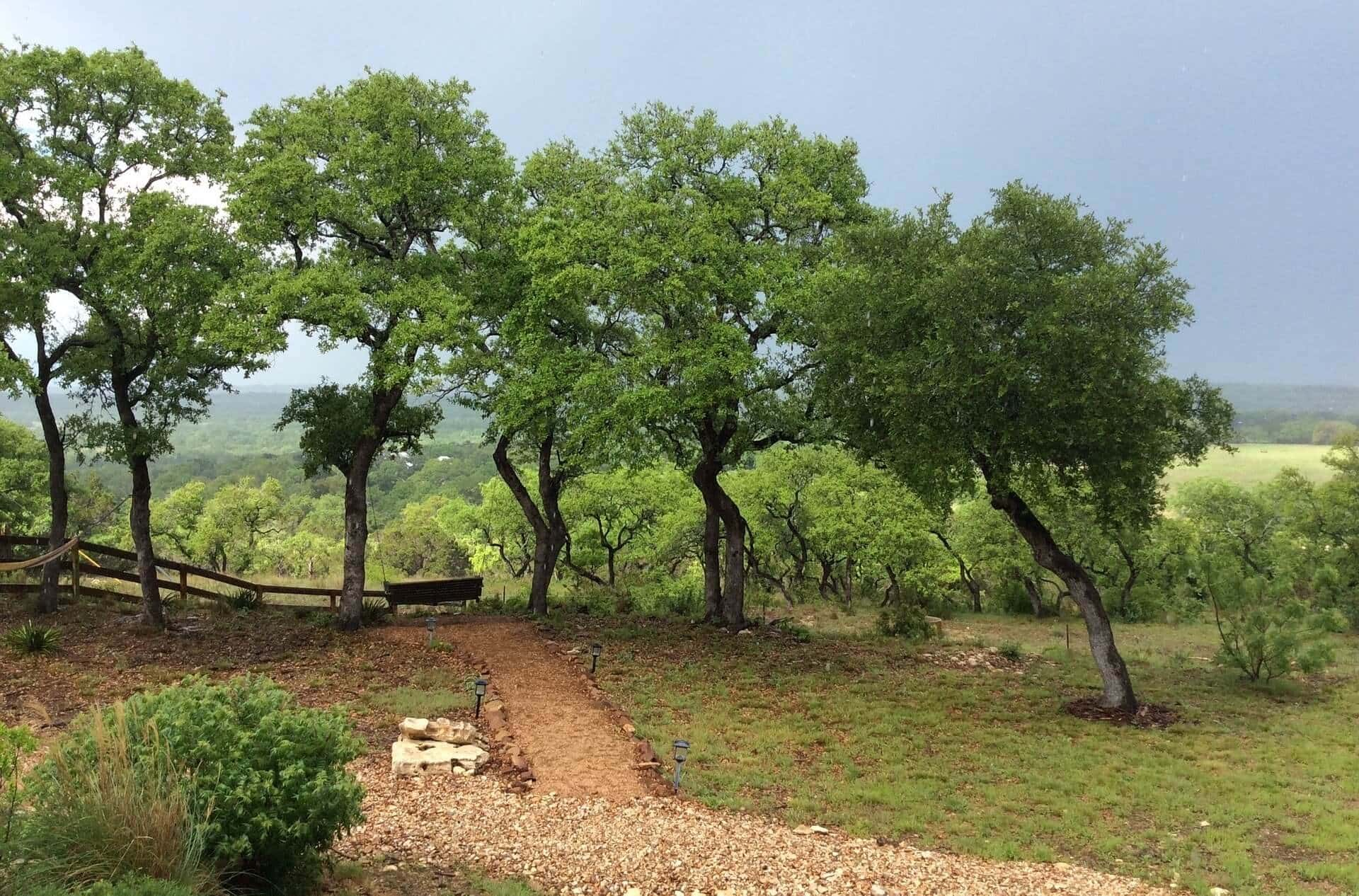 Tour Texas Hill Country
